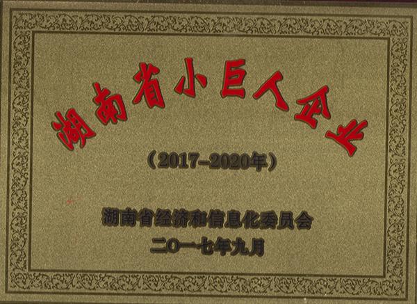 小巨人企业证书